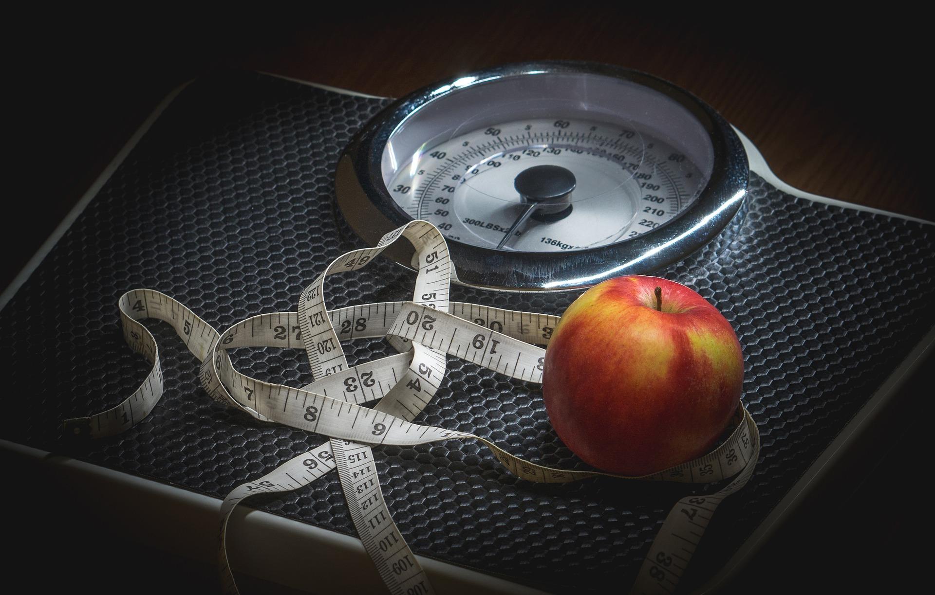 estrógeno, obesidad