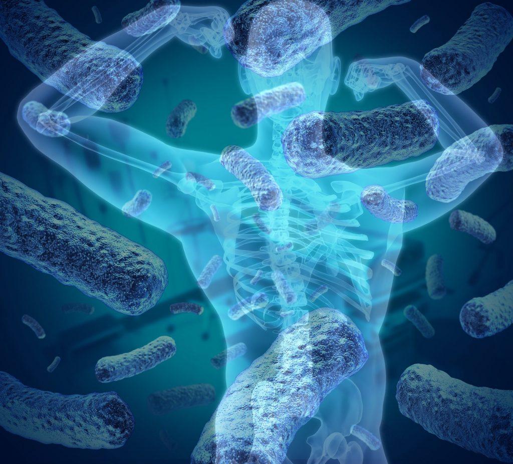 cepas bacterianas, microbioma