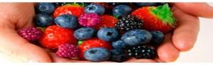alimentos-antienvejecimiento