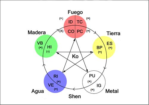 5 elementi in Kinesiologia
