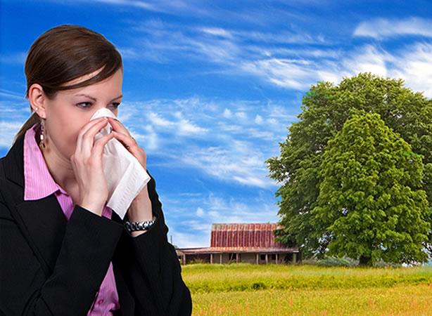 Comment la kinésiologie peut-elle nous aider en cas d'allergie au pollen?