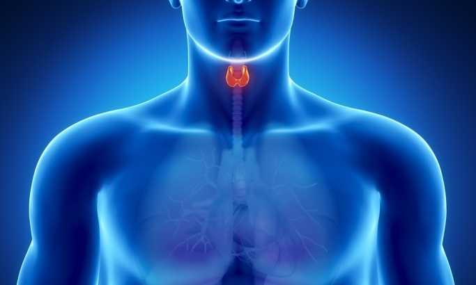 A tiroide e o triplo aquecedor