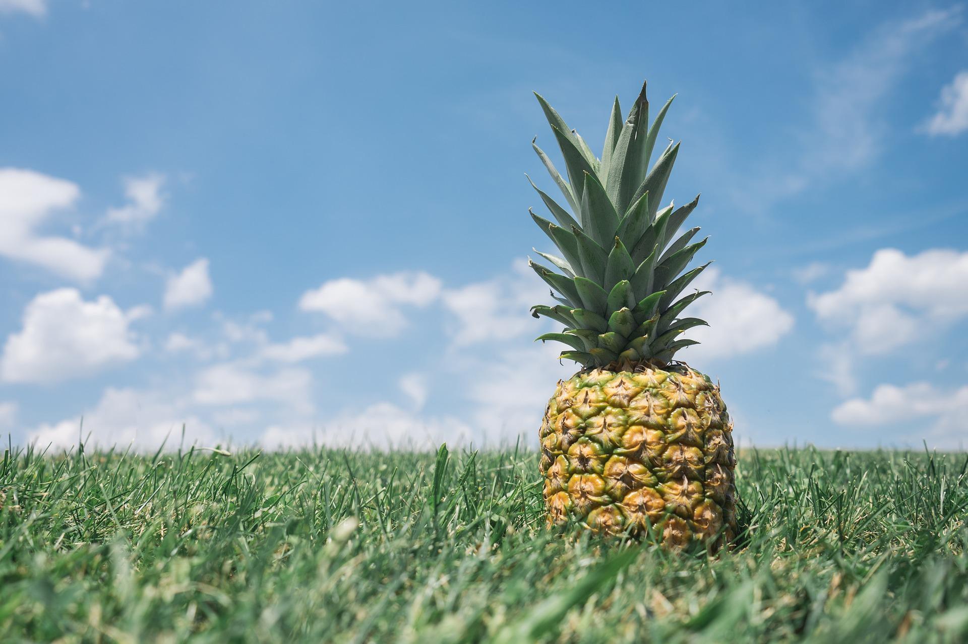 bromelina, ananás