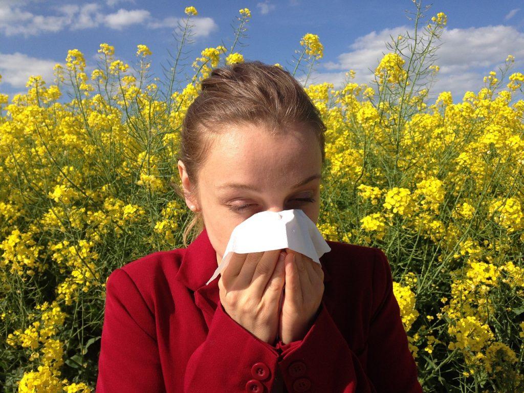 Relação entre a alergia ambiental, intestino e o fígado