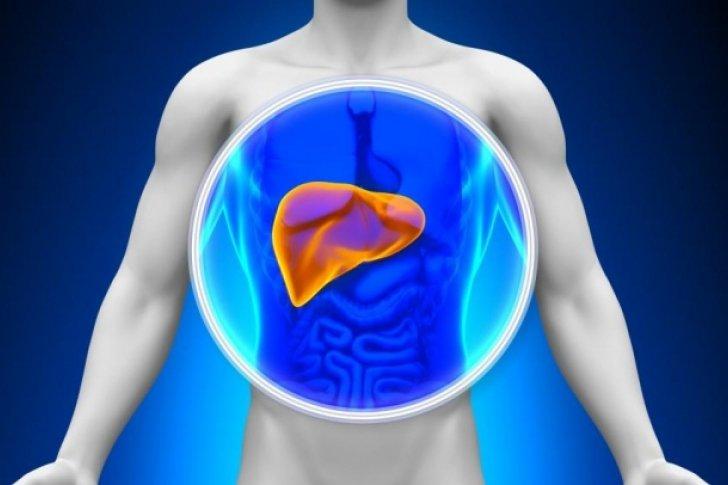 Limpeza do fígado