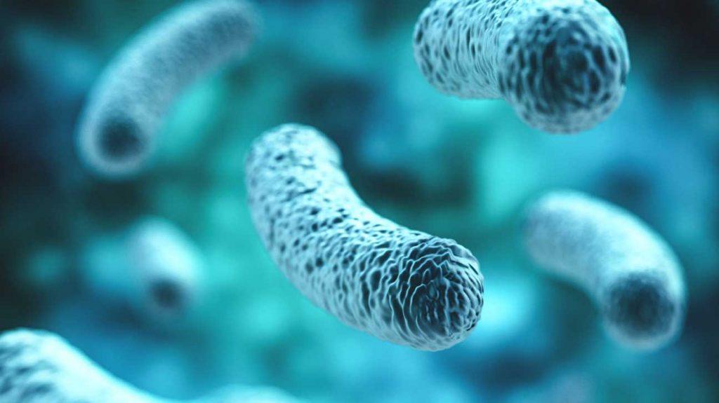 doença autoimune e o intestino